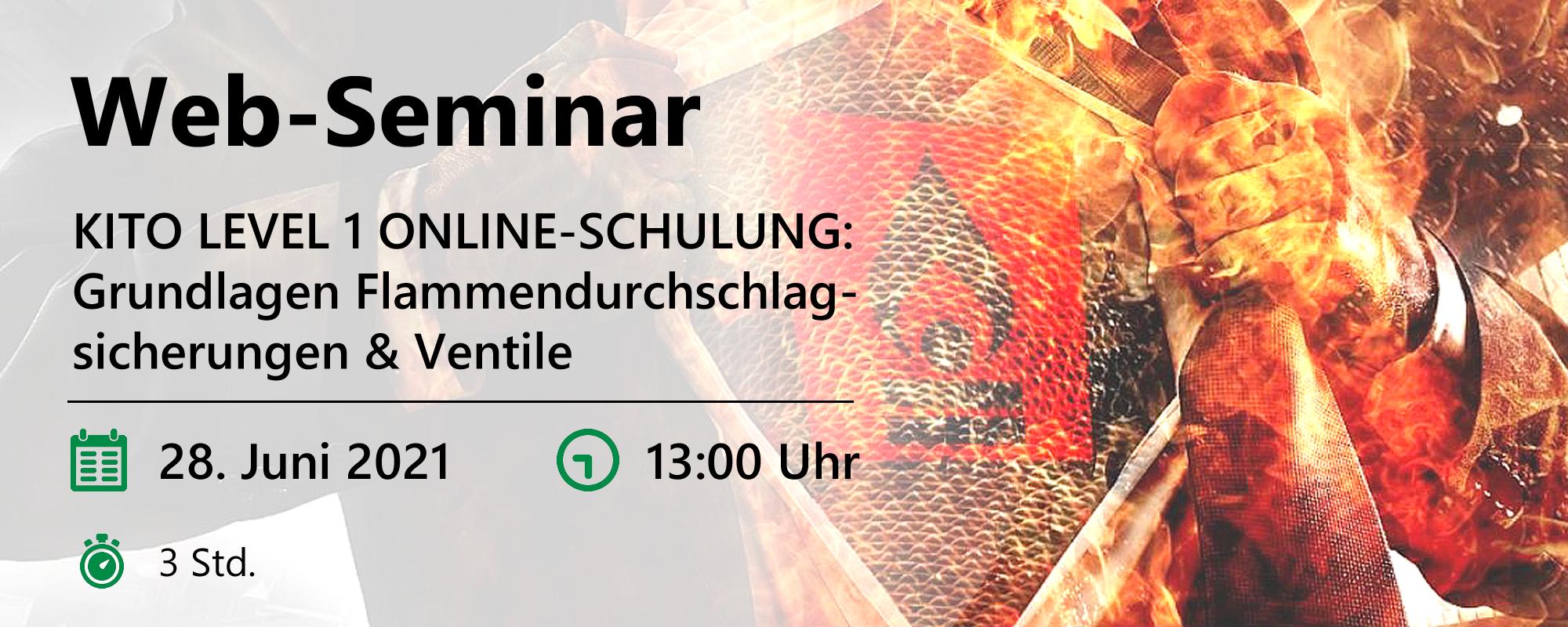 Web-Seminar am 28.06.2021
